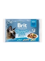 Brit Premium Pouches Fillets in Gravy 12*85g
