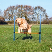 Agility  Hinder 123 x 115 cm