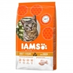 Iams Adult Chicken 10 kg