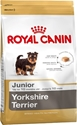 Yorkshire Terrier Junior 1,5kg